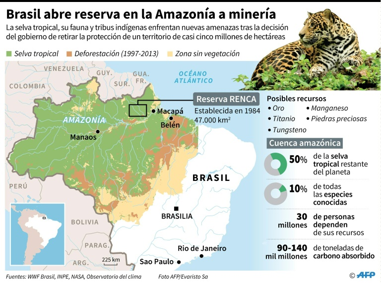 Peligra la amazonía. Temer abre enorme reserva a minería y enciende alarmas en Brasil.