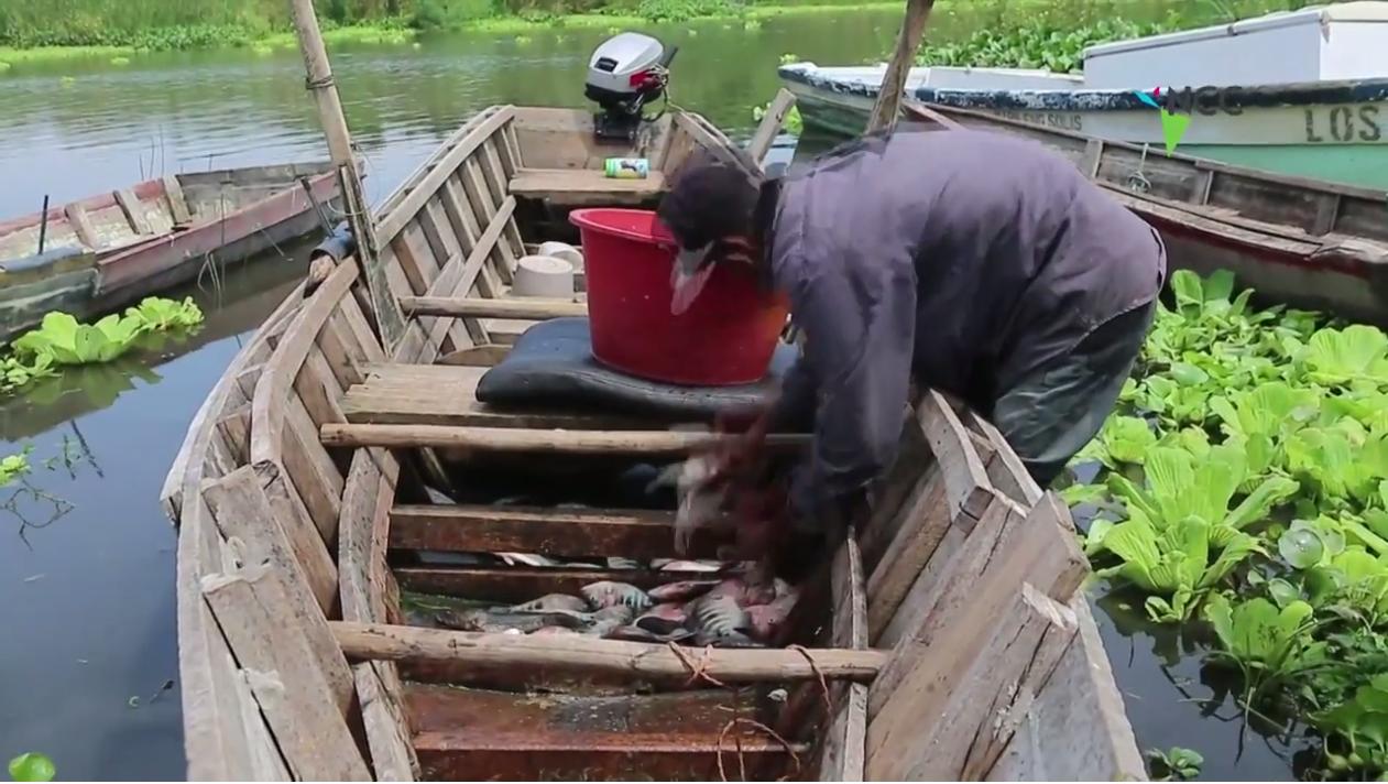Lago contaminado aporta alimento y empleo para pobres en Nicaragua