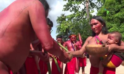 El caxiri, un licor que alegra a los espíritus de la selva amazónica