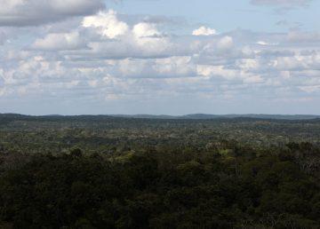 DECLARAN ESTADO DE CALAMIDAD POR INCENDIOS FORESTALES EN PETÉN, GUATEMALA