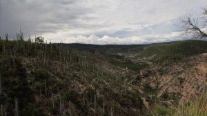 Excepcionales sitios de México, Colombia y España, camino a ser Patrimonio de la Humanidad