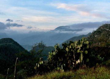 Valle de Tehuacán Cuicatlán