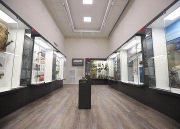 Museo de Historia Natural inaugura sede en antigua cárcel uruguaya remodelada