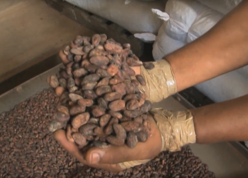 Baracoa, donde se procesa el chocolate cubano
