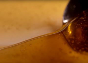 Lengua artificial detecta miel adulterada