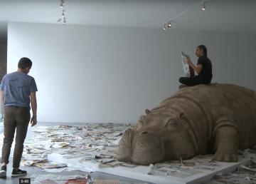 Un calmado hipopótamo mueve conciencias