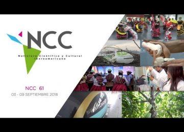 Portada NCC61