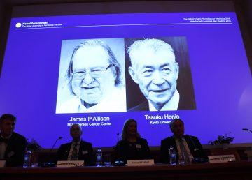 Estadounidense Allison y japonés Honjo comparten Nobel por terapias de cáncer