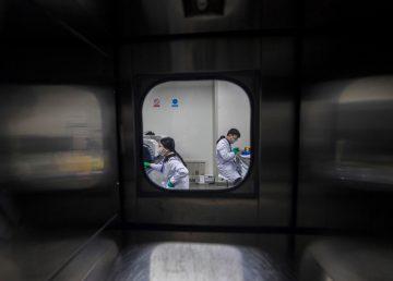 La OMS investigará el caso de los bebés modificados en China