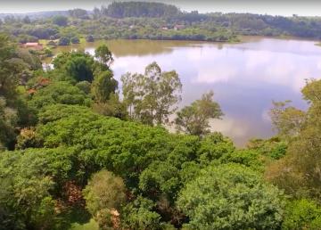 El Bosque Nacional de Ipanema, una escuela al aire libre
