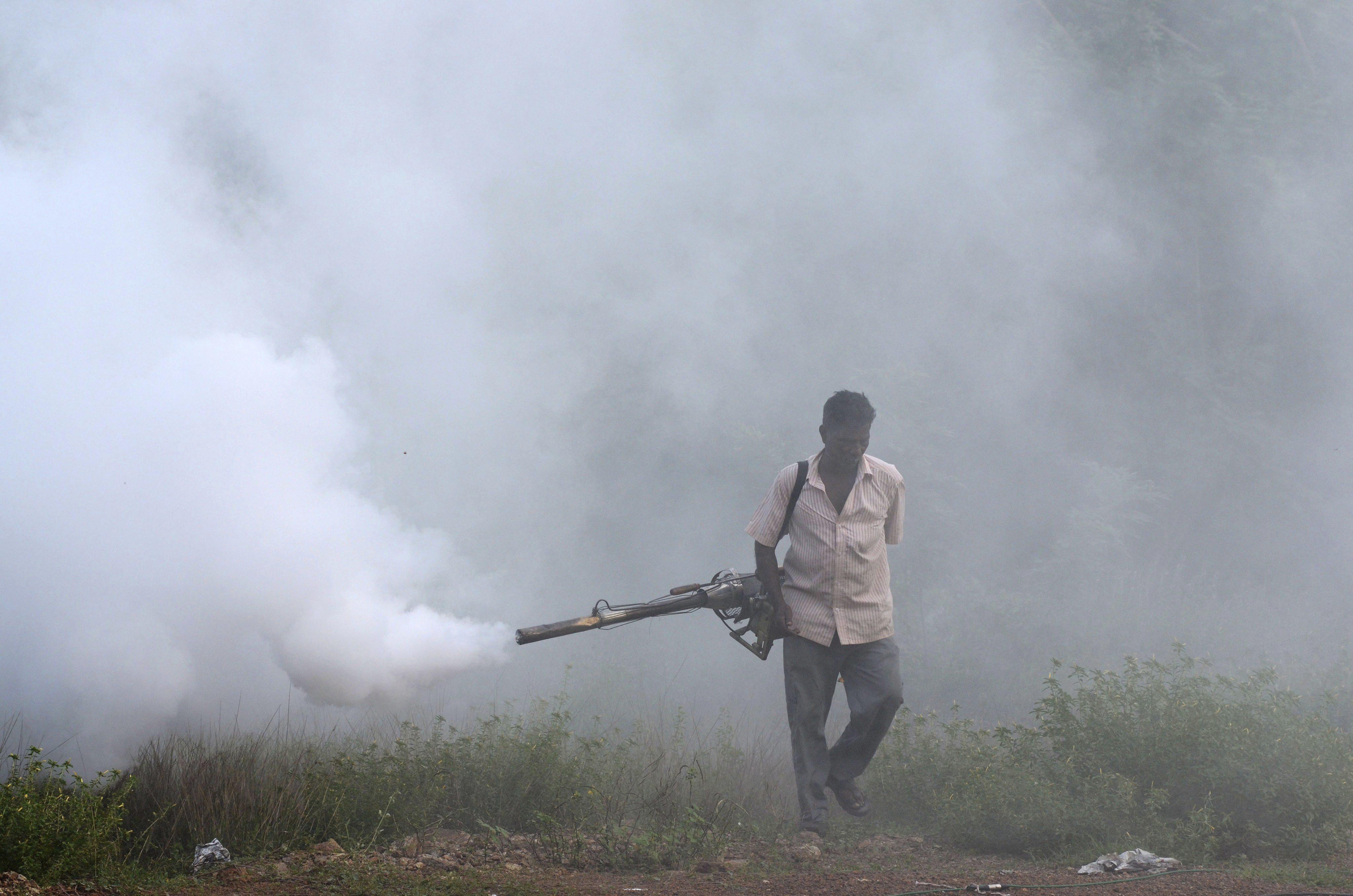 Hallan mosquito transmisor de malaria resistente a los insecticida