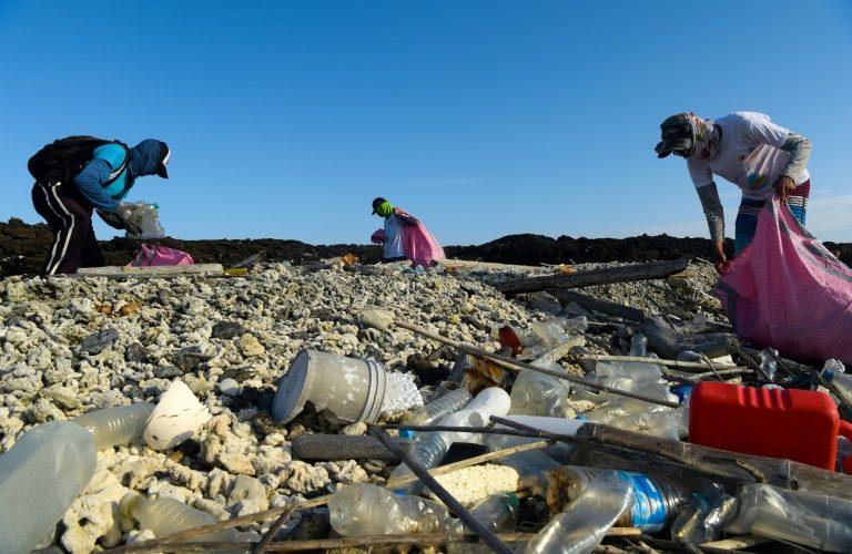 Un monstruo en el paraíso: el plástico amenaza la vida en Galápagos