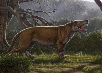 Restos de los mayores mamíferos terrestres descubiertos en Kenia