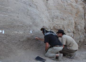 Análisis de orina ayudan a esclarecer misterios arqueológicos