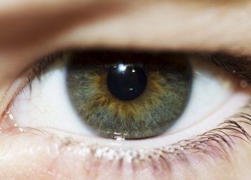 Descubren mutación de un gen que causa la distrofia macular de la retina