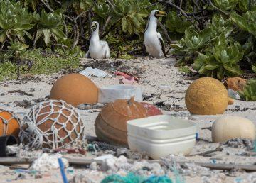 La Isla Henderson, en el Pacífico, paraíso arruinado por el plástico
