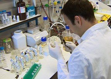 Terapia contra el melanoma y cáncer de próstata será probada en Brasil