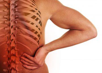 Descubren un mecanismo que podría mejorar las lesiones medulares