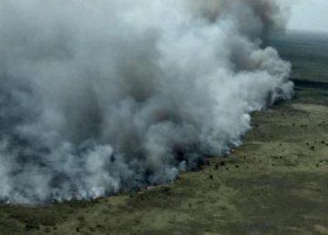 Incendio afecta más de 600 hectáreas de pastizales en Quintana Roo