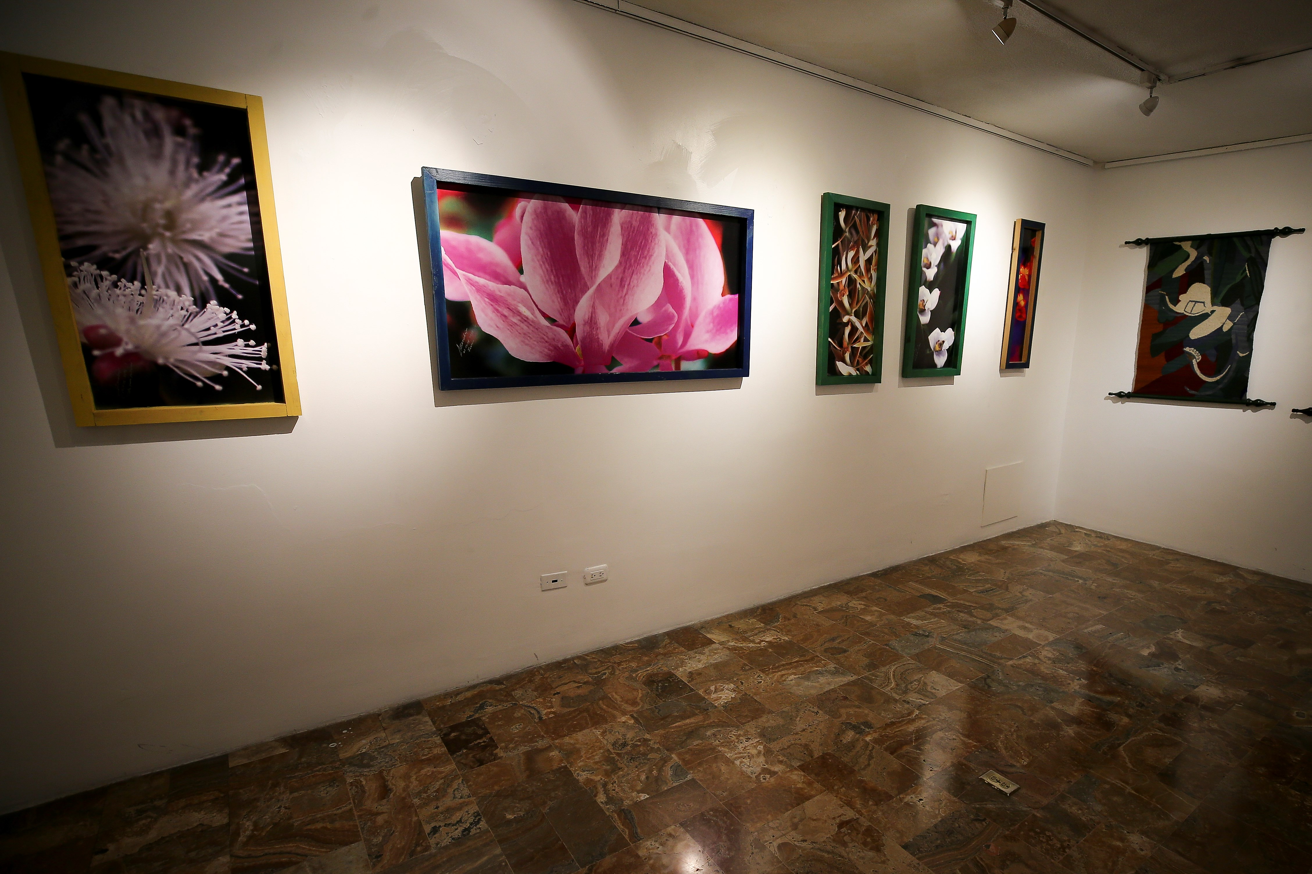 Artistas ecuatorianos exhibirán obras por la salvación de la naturaleza