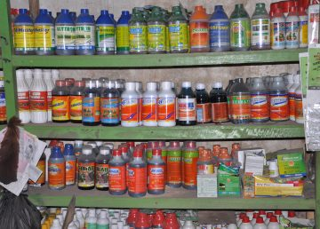 Tailandia va prohibir el glifosato y otros dos pesticidas