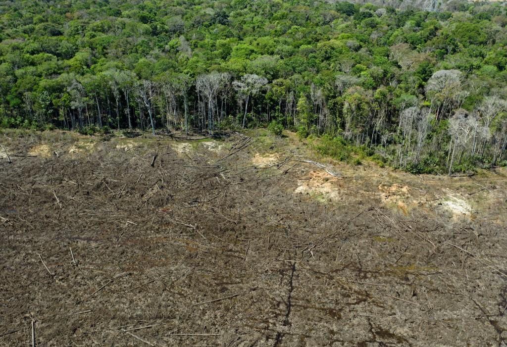Brasil perdió un área natural del tamaño de España en 18 años
