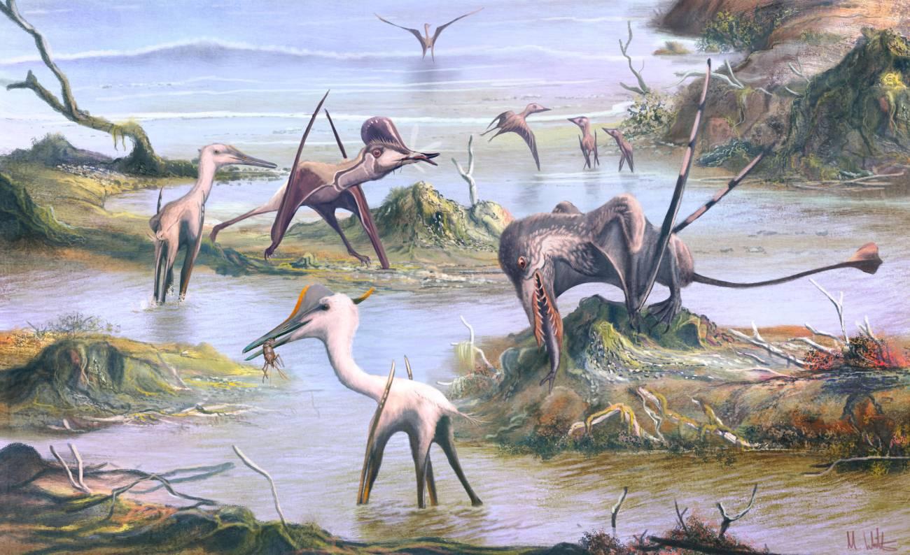 Desvelan nuevos secretos de los pterosaurios: qué comían y cómo empezaron a volar