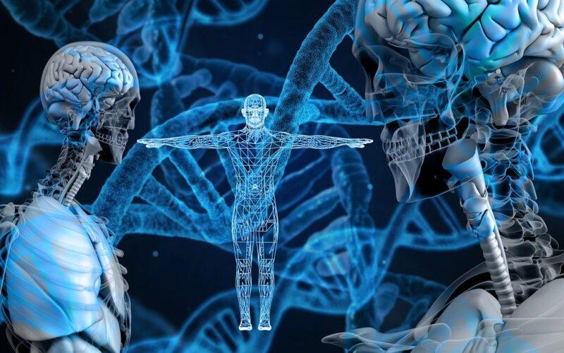 Brasil creará banco de datos con información genética de cien mil personas